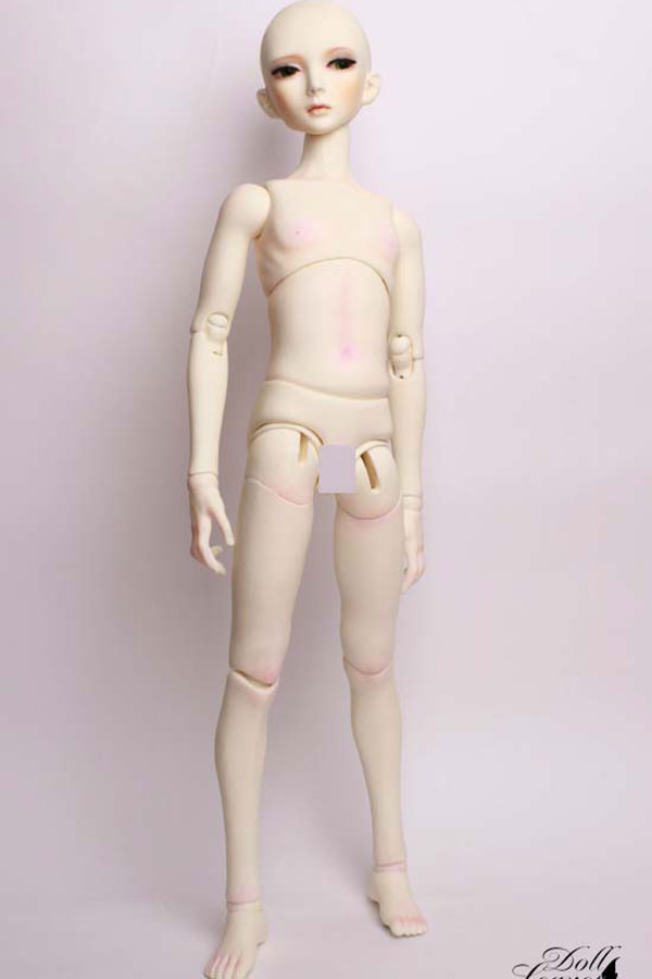 DollLeaves Parts 60cm SD Male Body DSB6002