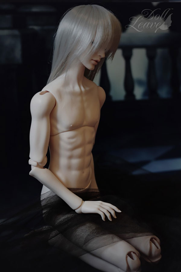 DollLeaves Parts 70cm SD Male Body