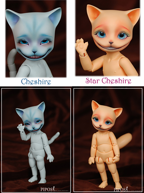 Pipos PI Cheshire LE Basic and Star