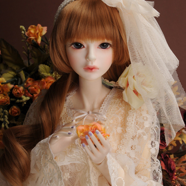 SD - Dollmore
