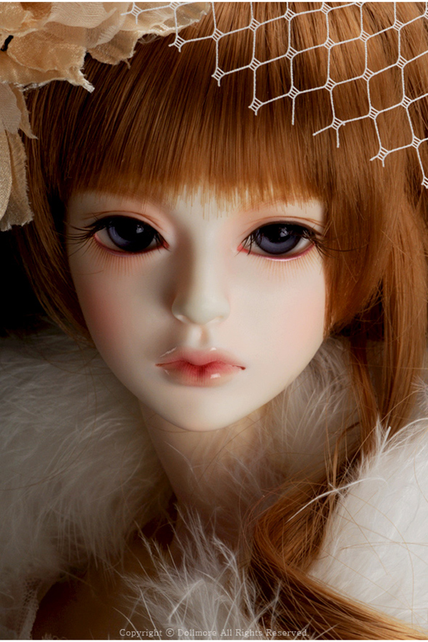 Dollmore Model Doll F Claudia Shield