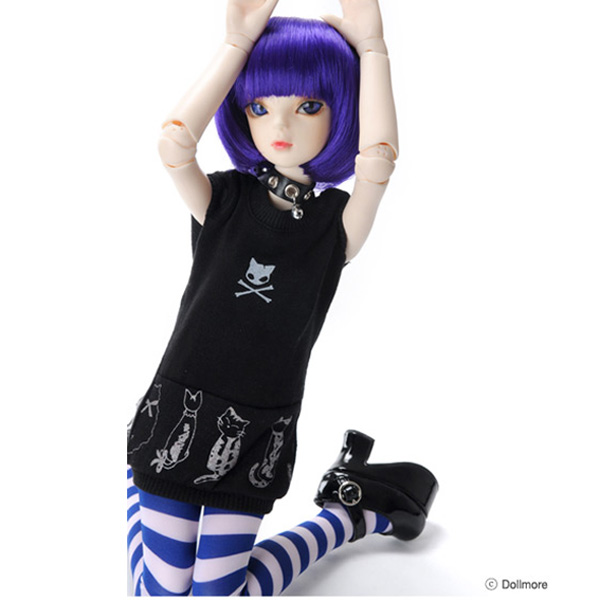 cat-party-msd-dollmore