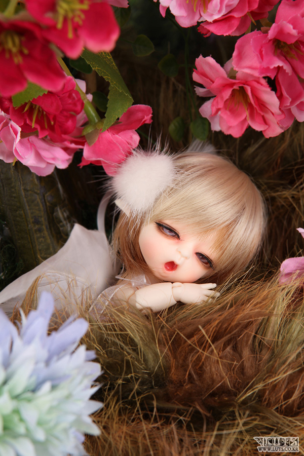 Luts BJD Tiny Delf Louis Elf