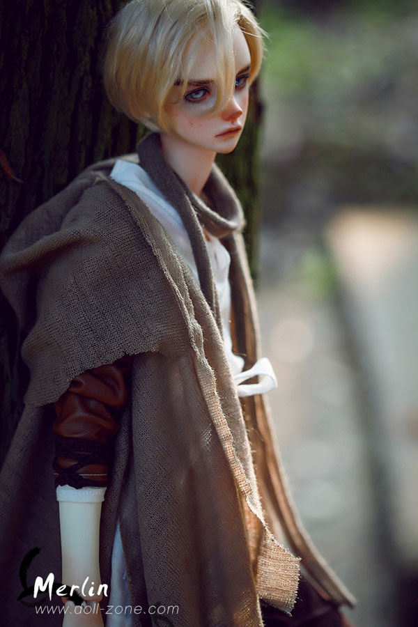 dollzone sd merlin