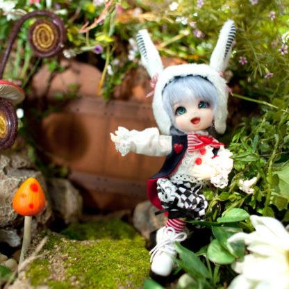 fairyland pukifee pongpong