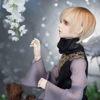 FeePle60 Basic BOY Dolls