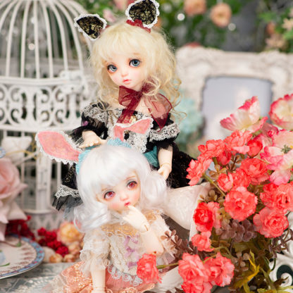 fairyland littlefee niya rabi