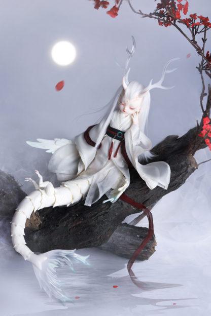 doll zone dragon chuan po