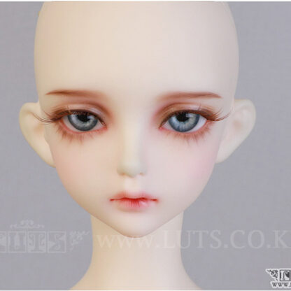 luts model delf ann
