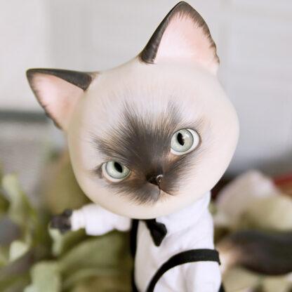 pipos siamese pang cat